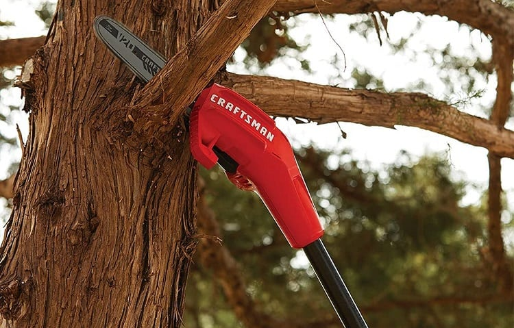 Cordless Pole Saw Weight