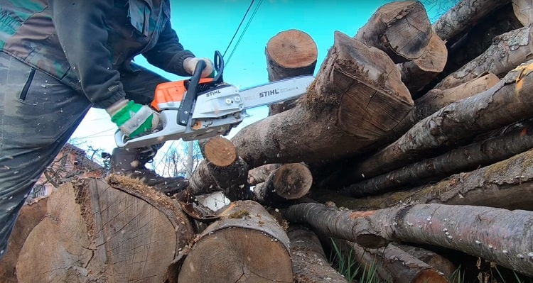 Core Features of the Stihl MS 261