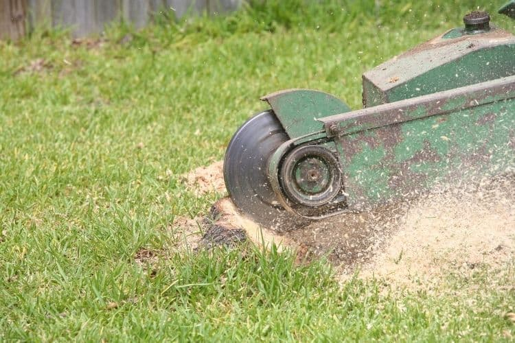 Different Types of Stump Grinders