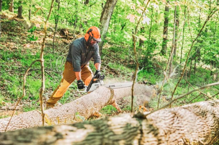 What are the Different Types of Stihl Chainsaws