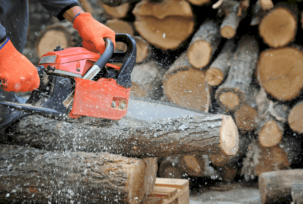 Best Craftsman Chainsaw Models Guide